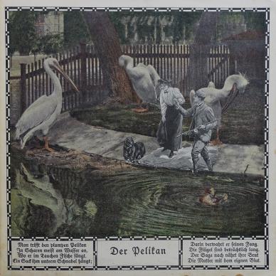 Zoo_Bell (21 von 49)