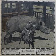 Zoo_Bell (25 von 49)
