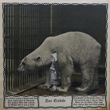 Zoo_Bell (46 von 49)