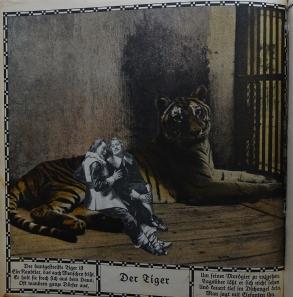 Zoo_Bell (48 von 49)